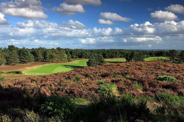 Sunningdale (New) Course