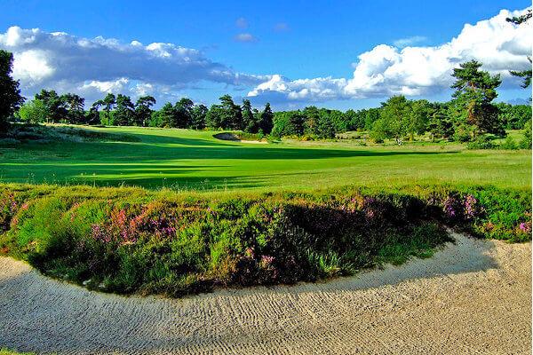 Walton Heath (Old) Golf Club